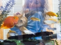 Fish Tank View