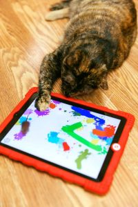 iPad kitty game