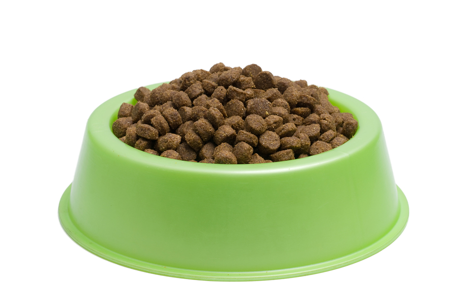 Cat Dog Food Bowl Png