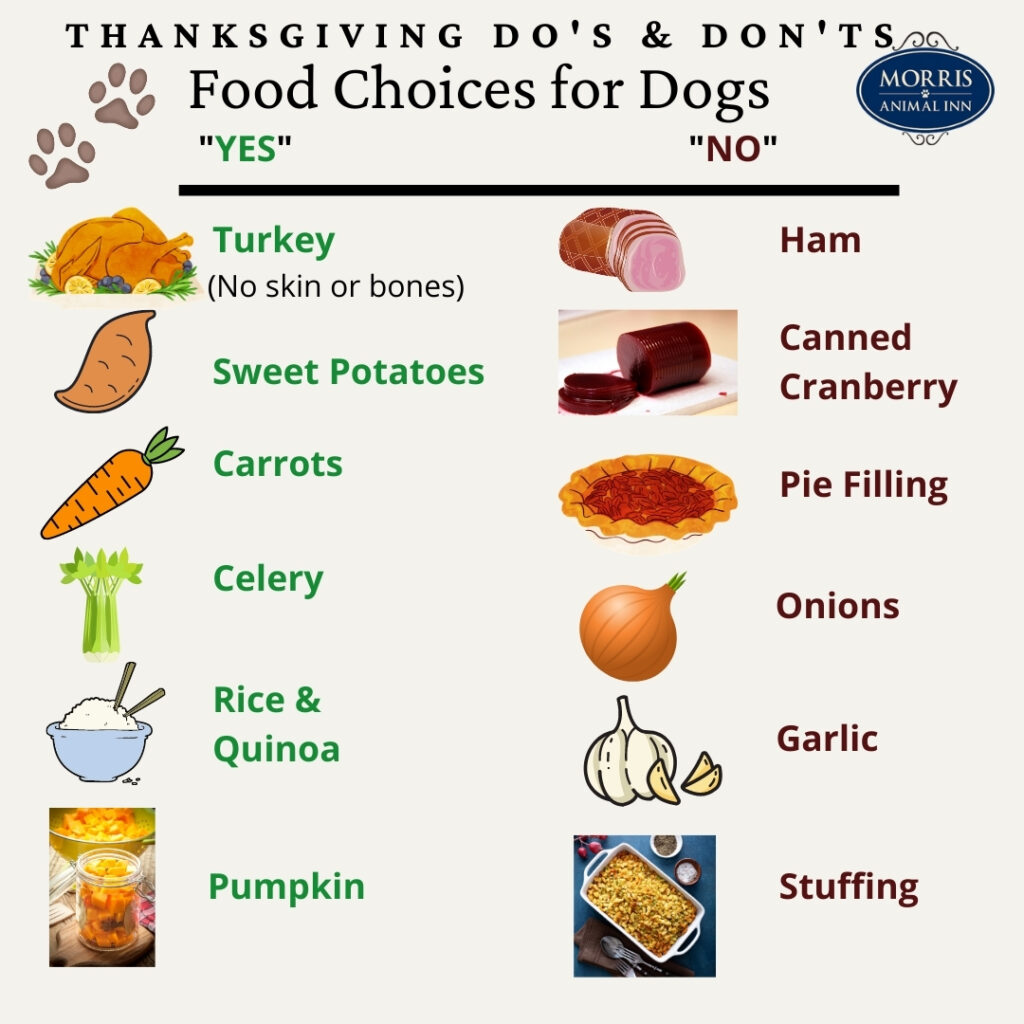 Thanksgiving Food for Dogs