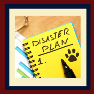 Prepare Your Pet for Natural Disasters