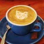 Cat Coffee Shops