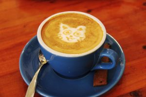 Cat Coffee Shops