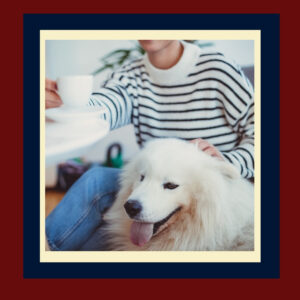 Dog friendly coffee shop