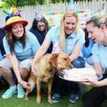 Morris Animal Inn staff feeding a dog a birthday cake