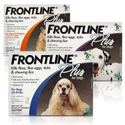 frontline for cats instructions