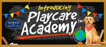 Playcare Academy
