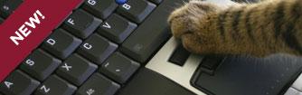 Cat pressing a keyboard